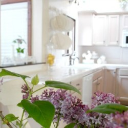 A Kitchen Makeover at Fox Hollow Cottage