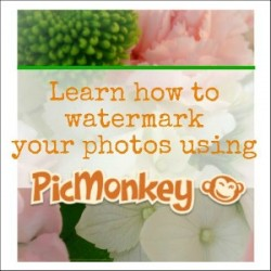 Watermark Your Photos with Picmonkey - Tutorial - foxhollowcottage