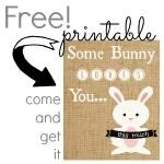 Free Printable {no-mess burlap Easter bunny}