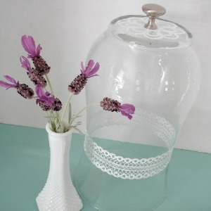 Diy a glass vase into a cloche fox hollow cottage for Martha stewart glass paint instructions