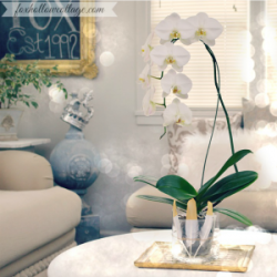Mantel Decor and How To DIY an Orchid Flower Vase