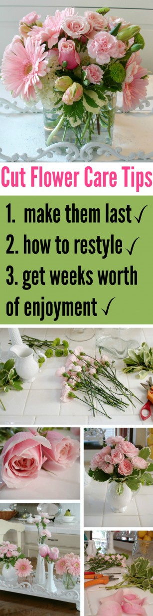Cut Flowers - tips and ideas on how to make floral arrangements last