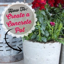How to Create DIY Concrete Planter Pots by The Wood Grain Cottage