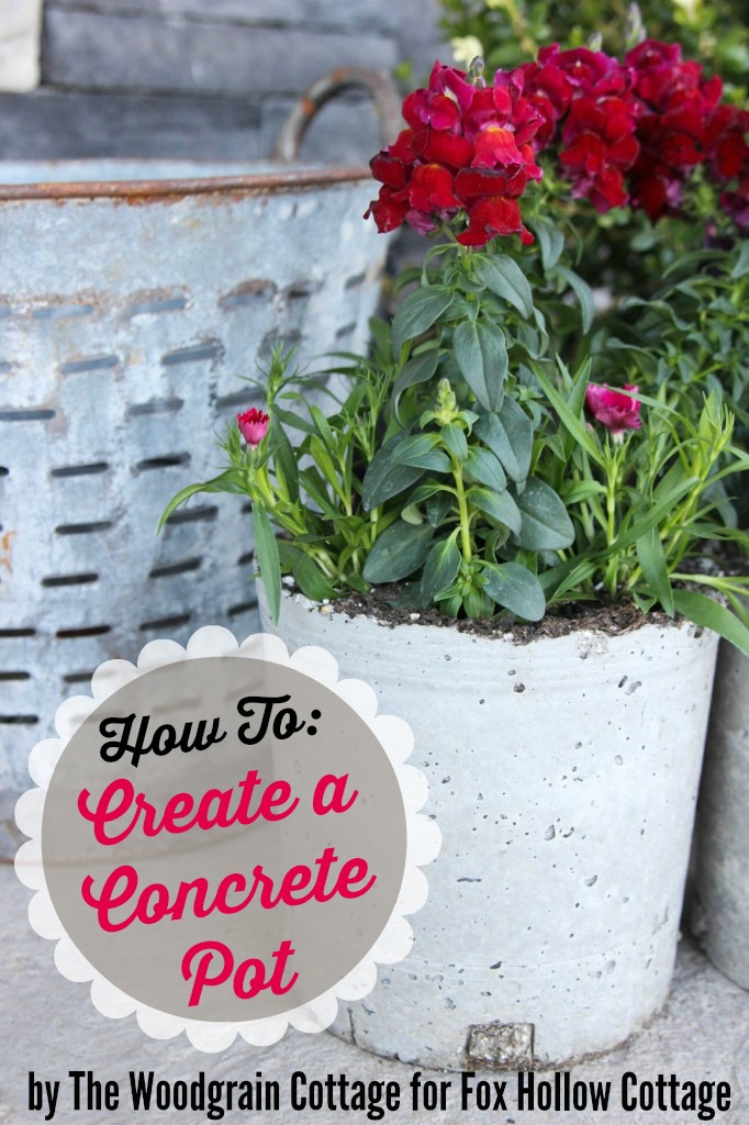 How to Create DIY Conrete Planter Pots by The Wood Grain Cottage