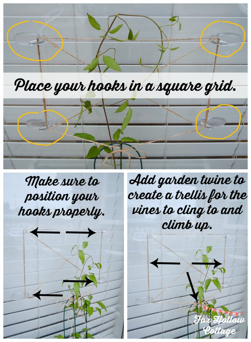 How to create a trellis in a glass window - #DamageFreeDIY #ad