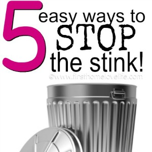 How to eliminate trash garbage can odor