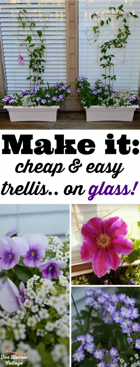 Make it:: A DIY Trellis on GLASS!! Small Space Summer Vertical Garden Planting Idea #DamageFreeDIY #ad
