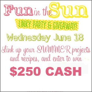 Fun in the sun link party and giveaway 300