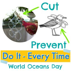 world ocean day - cut six pack rings - protect sea water animal wildlife