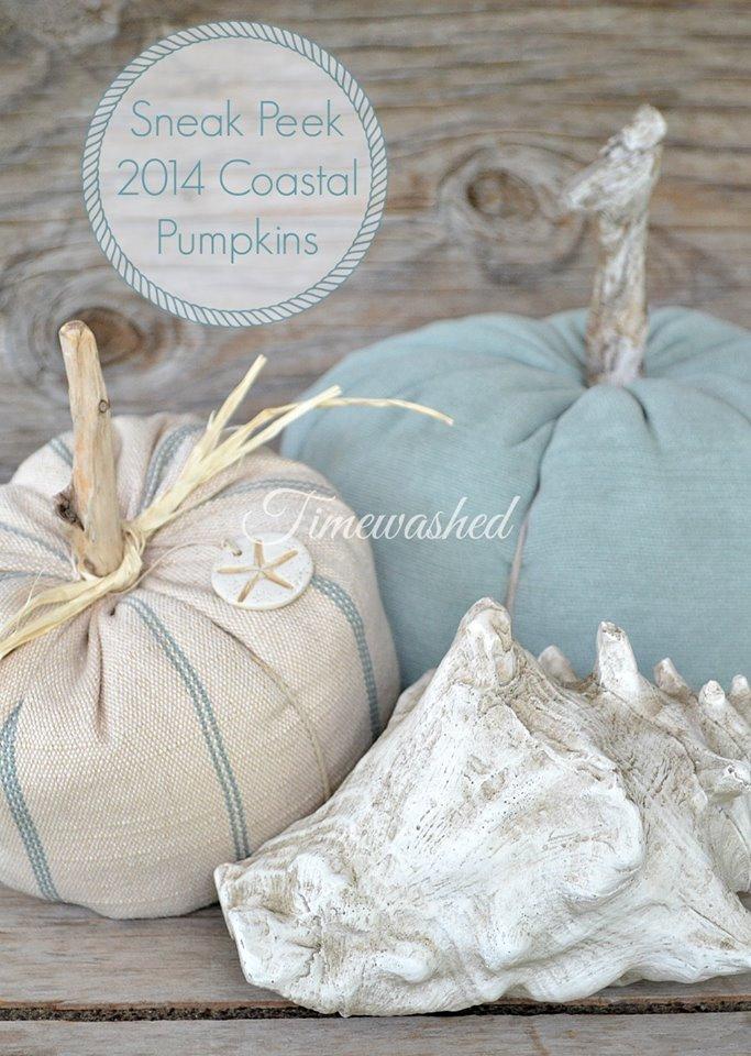 Timewashed Coastal Plush Fabric Pumpkins