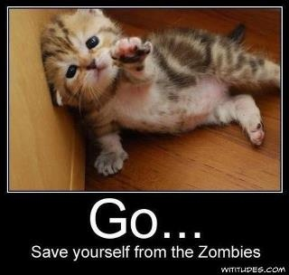 go.. save yourself from the zombies kitty meme
