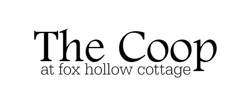 The Coop at foxhollowcottage blog