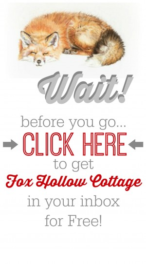 Subscribe to Fox Hollow Cottage blog for Free red