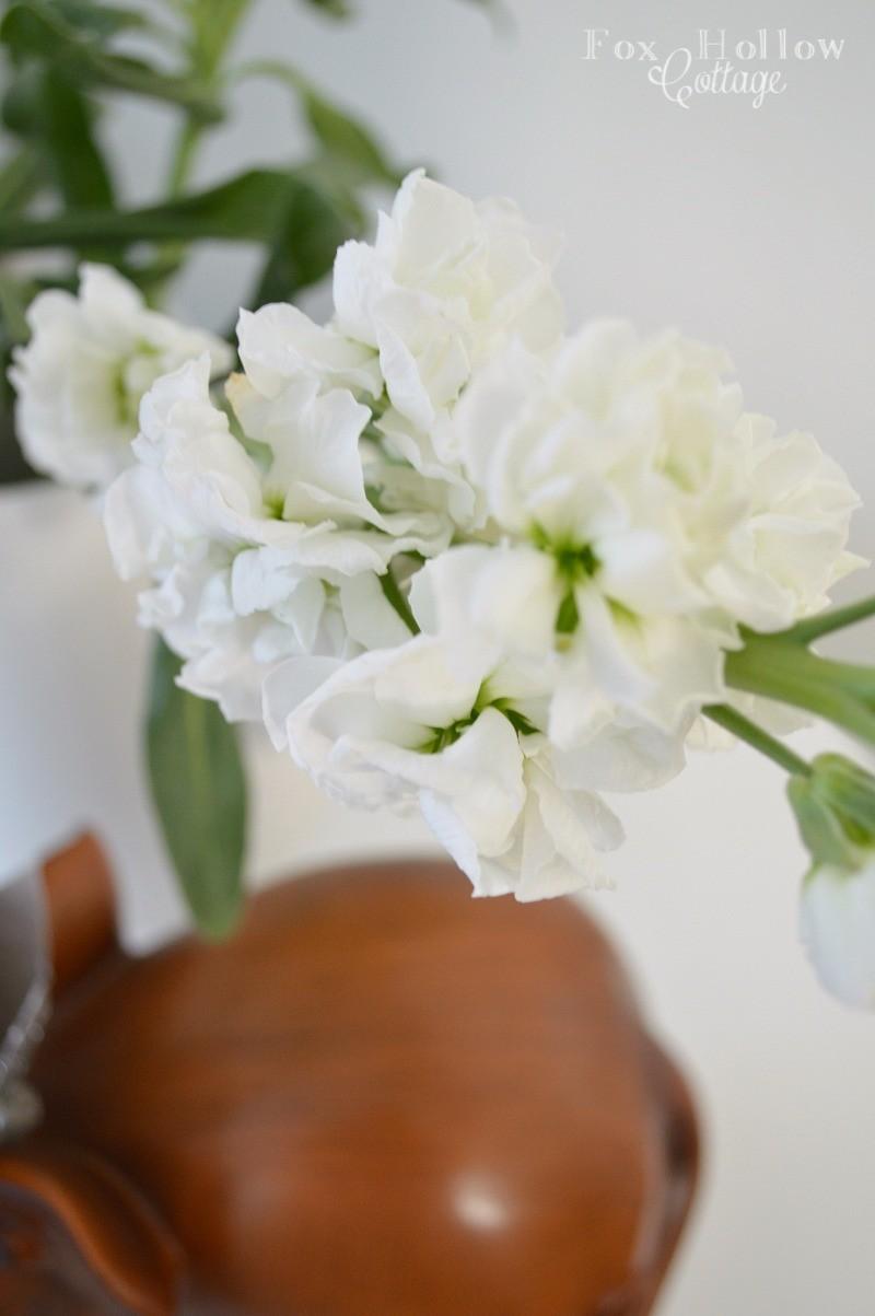 Stock Spring Flower