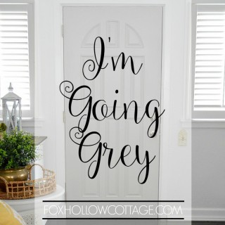 Going Grey - New Door Color - foxhollowcottage