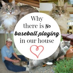 Family of Five - no baseball in the house