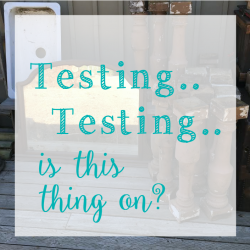 Testing, testing… is this thing on?