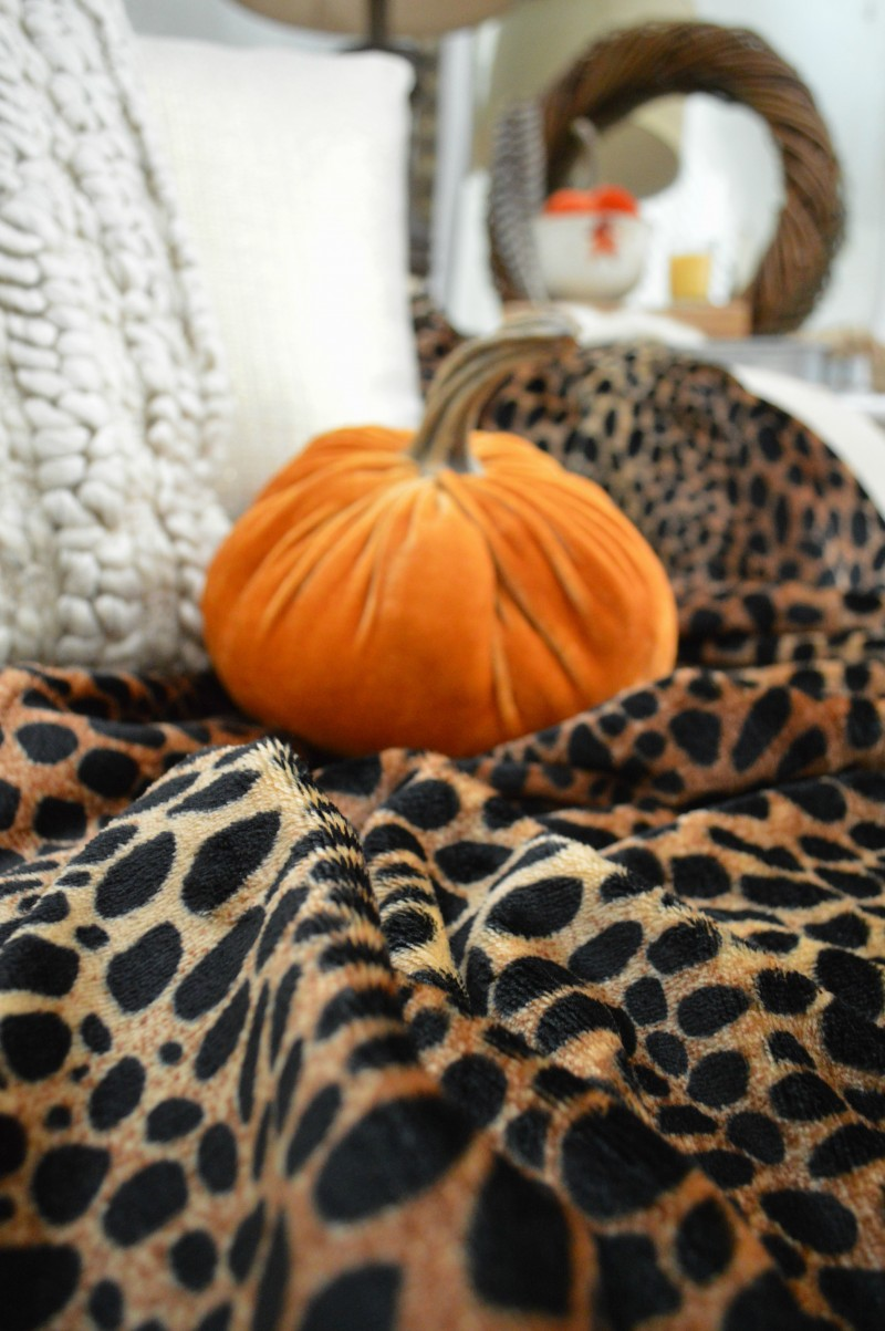 @bhg Better Homes and Gardens plush Cheetah throw blanket and velvet pumpkin | @bhglivebetter Sponsored