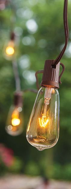 10 count Edison bulb indoor outdoor patio party sting light set 14.82