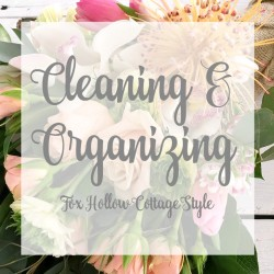 Favorite Cleaning Tips and Organizing Projects
