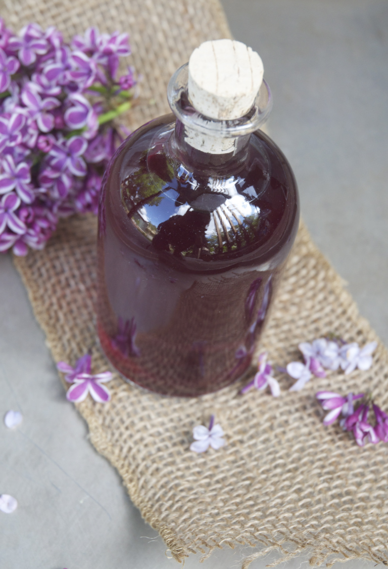 Lilac facts tips uses - lilac simple syrup purple haze lilac cocktail holly and flora