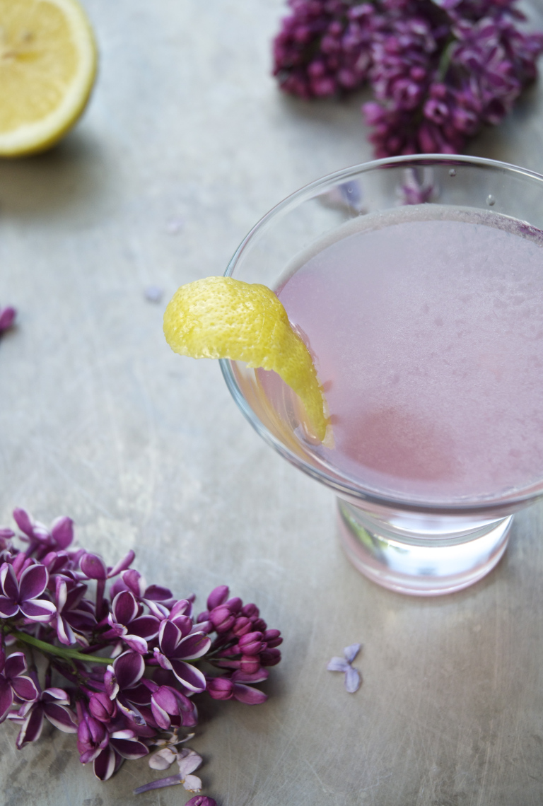 Lilac facts tips uses - purple haze lilac cocktail holly and flora