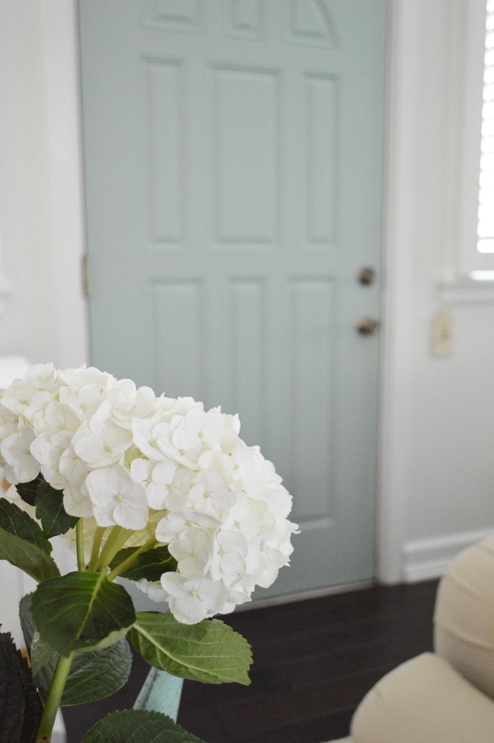 White hydrangea, Wythe Blue door. Benjamin Moore