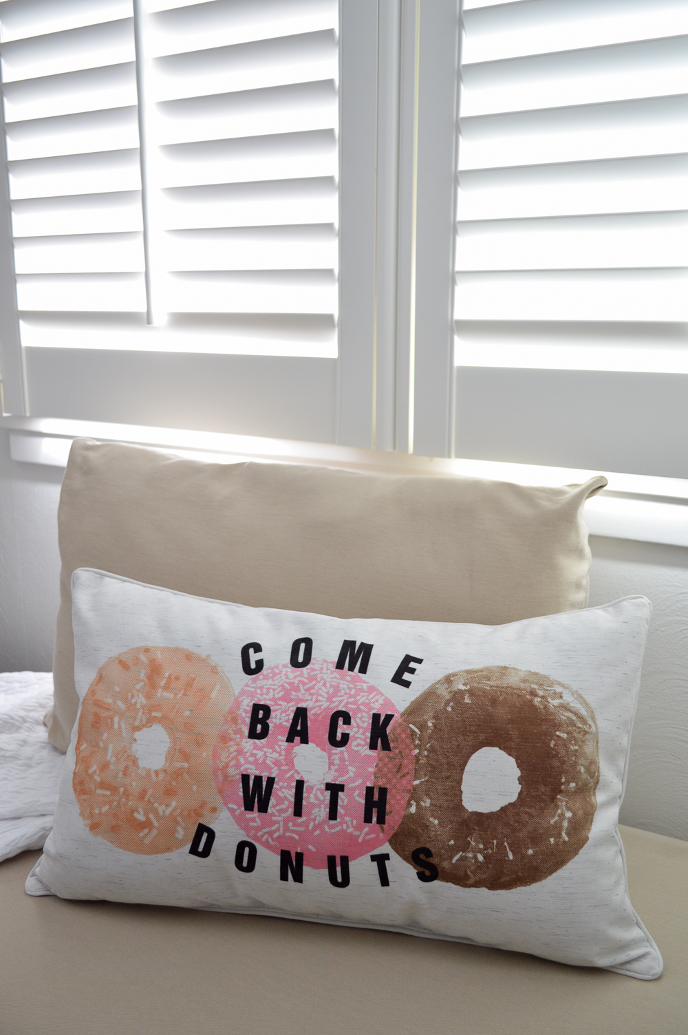 Come Back With Donuts silly fun pillow