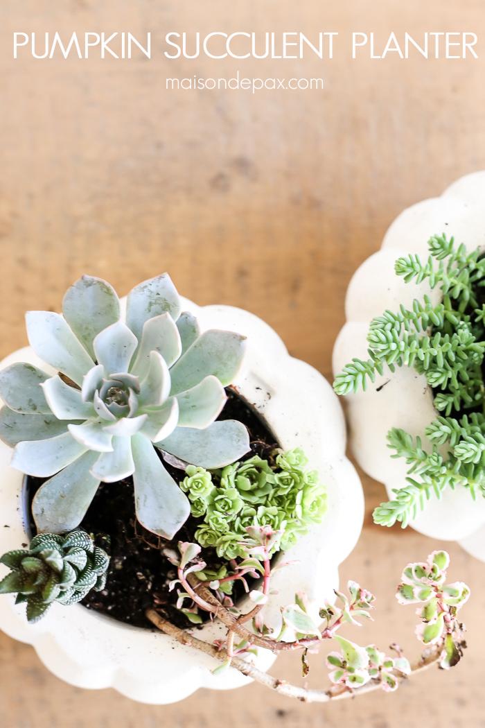 Neutral Fall DIY Craft and Decorating Ideas - Succulent Pumpkin Planter from Maison de Pax