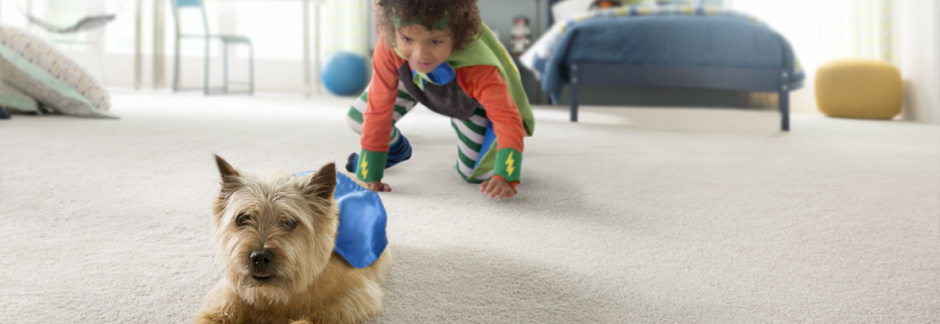 Flooring America Stainmater PetProtect Carpet - Pet & Kid friendly carpeting - Information and Sale - sponsored pin