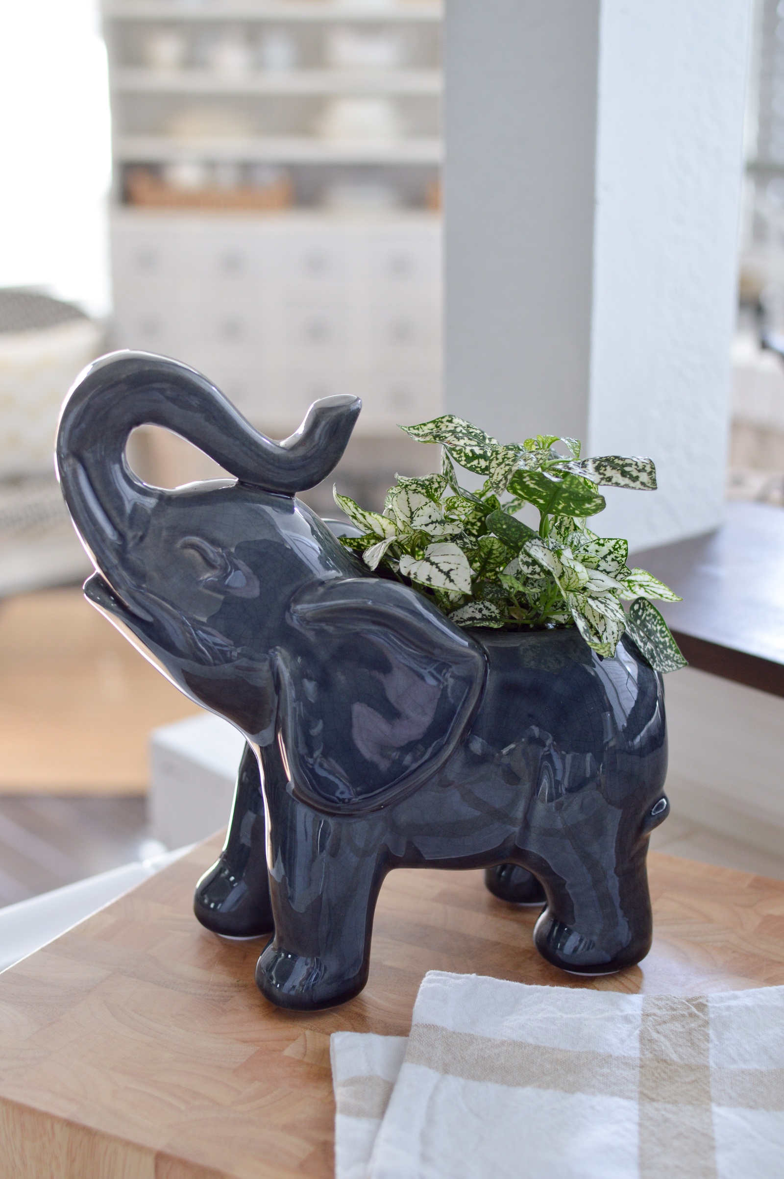 Outdoor In Spring Home Decor and Furniture Ideas #sponsored with Better Homes & Gardens at Walmart | Elephant planter