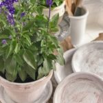 Beautiful Aged Terracotta Pot Paint Makeover